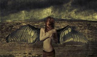 Sarah Bowman Photography