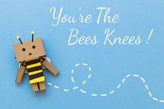 You're the Bees Knees! (Arielle.Nadel) Tags: stilllife bee valentinesday yotsuba danbo 2470mm toyphotography revoltech  yourethebeesknees danboard  minidanbo canon5dmarkiii