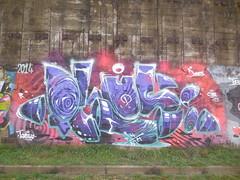 yo reser (en-ri) Tags: parco muro wall writing torino graffiti dora plus viola rosso lilla dones 2014 cyou thnm