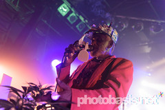 lee-scratch-perry-dub-cahmpions-festival-2015-WUK-17.jpg