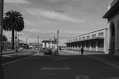 STR4 (lpshikhar) Tags: sanfrancisco california street sunset portrait sky blackandwhite birds landscape photography scenic goldengatebridge baybridge bayarea