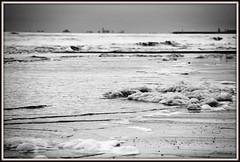_JVA4629 (mrjean.eu) Tags: gris noir belgique noiretblanc knokke vagues nuance ambiance nuances borddemer heurebleue lumièredusoir