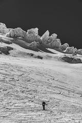 Autour des Grands Mulets- (4) (Samimages) Tags: ski rando chamonix montblanc alpinisme grandsmulets