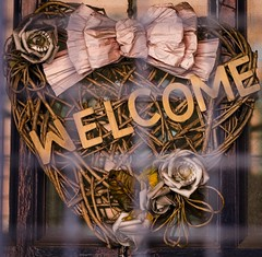 Welcome (Conor Daniel Kinahan) Tags: street urban abandoned shop store away cage locked