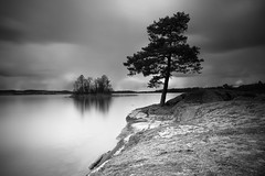 pine (Andreas Lf) Tags: longexposure blackandwhite tree nature water monochrome pine clouds reflections landscape island rocks sweden overcast nopeople le serene scandinavia tranquil kinda stergtland lakescape nordics jrnlunden rimforsa sirui minoltaaf20mm28 sonyalphailce7 nisiprocpl nisiv5 nisiarnd100030 nisireversenanoirgnd809