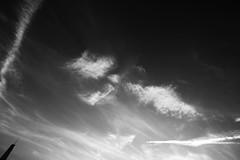 in memory. (jdx.) Tags: nyc newyorkcity sky blackandwhite cloud eastvillage newyork abstract building monochrome skyline architecture clouds digital buildings grey fuji outdoor worldtradecenter lowereastside fujifilm wtc grayscale lowermanhattan nofilter freedomtower 1worldtradecenter jdx fujixe2