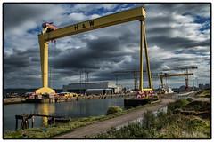 Once a Belfast Industry (D.k.o.w) Tags: industry yellow island belfast cranes queens northernireland samson titanic goliath drydock hw shipbuilding belfastgiants belfastlough harlandandwolff eastbelfast gantrycranes belfastshipyard canon7dmkii