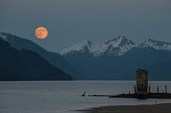 Orange moon rising (asaggiomo1983) Tags: moon mountains alaska night landscape outdoors nikon juneau moonlight