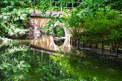 Nature reflection (Maria Eklind) Tags: bridge trees reflection berlin nature water fence germany de pond europe outdoor tyskland tiergarten staket spegling tiergartenstrase