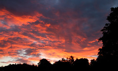 The night the sky caught fire (Mukumbura) Tags: sunset sky clouds fire orange red pink peach patterns silhouette trees rain sundown evening flames vivid colourful wells somerset