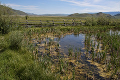 Wetlands (Travels with Kathleen) Tags: sky mountain water landscape outdoor scenic wyoming jacksonhole wetland