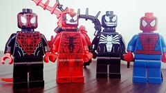 Wheres the Spider? (terryfay1983) Tags: spider iron lego spiderman carnage minifigs venom legominifigure afol minifigures legophotography brickstories flickrfol