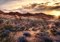 Sunset at Valley of Fire #3 (Matt Anderson Photography) Tags: road travel sunset summer usa mountain plant southwest nature horizontal landscape outdoors photography day desert nevada meadow surreal tranquility nopeople panoramic valley copyspace sunrays dramaticsky barren scenics mojavedesert sunstar valleyoffirestatepark orangecolor wonderlust cloudsky traveldestinations colorimage beautyinnature animalwildlife rockobject