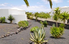 Beautiful 3 bedroom villa with sea view and pool in Conil - See more at: http://www.lanzaroteinvestments.com/2303-3-bedroom-villa-with-sea-view-and-pool-in-conil.htm#sthash.IWolXj9L.dpuf (Lanzarote Investments Real Estate) Tags: travel beautiful spain realestate relaxing property lanzarote calm wanderlust stunning canaryislands