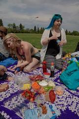teddybearpicnicday-19 (claire.pontague) Tags: bear park party kite sunshine outdoors picnic teddy stage saskatoon dancefloor djs 2016