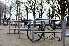 Bike upside down (paulusvp1) Tags: trees people urban bike bicycle belgium down wrong antwerp schelde upside racks d3300