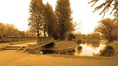 DSCN5597 (UltraCoder) Tags: park bridge water yellow landscape warm outdoor