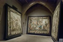 Sigenza (Hispania Nostra) Tags: espaa catedral guadalajara visita excursin patrimonio tapiz sigenza tapices patrimonioespaol hispanianostra