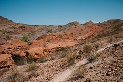5R6K2992 (ATeshima) Tags: arizona nature havasu