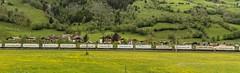 1434_2016_05_24_sterreich_Dorfgastein_LM_6189_907_&_MRCE_dispolok_ES_64_F4_-_027_DISPO_6189_927_mit_ekol_KV_Villach (ruhrpott.sprinter) Tags: railroad schnee salzburg train germany logo deutschland graffiti austria ic sterreich diesel natur wiese eisenbahn rail zug cargo 64 berge nrw passenger es lm blume fret ore gelsenkirchen ruhrgebiet f4 freight bb badgastein locomotives 189 lokomotive amtc cityshuttle sprinter badhofgastein ruhrpott gter 1144 dorfgastein ekol 1116 dispo europischer 6189 mrce tauernbahn lokomotion reisezug rpool dispolok nordrampe ellok cargoserv logserv intercombi lokfhrerschein gastainertal rocktainer