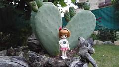 Prickly plant ahoy! (-nickless-) Tags: outdoors doll little dal muñeca rotchan minidal gozoki obitsu11cm