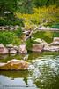 B36C6355 (WolfeMcKeel) Tags: park new city vacation bird nature water gardens fauna garden mexico botanical spring high pond flora downtown desert landscaping albuquerque 2016