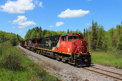 Topping L'Anse Hill (view2share) Tags: railroad travel trees sky clouds mi cn train spring track branch michigan transport may tracks rail railway rr trains roadtrip transportation herman rails summit locomotive local lightrail ge upperpeninsula freight northwood railroaders springtime railroads northwoods generalelectric canadiannational freighttrain dssa uppermichigan 2016 railroading northernmichigan huronmountains baragacounty dash9 rring branchline c449w trackage trackmaintenance cnna cnnorthamerica duluthsouthshoreatlantic lansesub cn2516 l539 lansehill may2016 deansauvola may302016