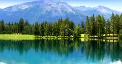 Lake Beauvert, Jasper National Park, Alberta, Canada (Nitish_Bhardwaj) Tags: park mountain lake plant canada tree water landscape jasper outdoor hill lac national alberta serene mountainside jaspernationalpark beauvert lakebeauvert