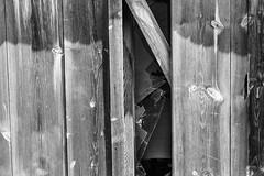 Como el alma (cmarga28) Tags: madera cristal vetas puerta porton abandonado roto fracturdo triste detalle cerca solitario bw perspectiva photography creativo imagen mirada