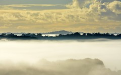 17.06.16 (dustaway) Tags: winter fog australia nsw inversion lismore foggymorning northernrivers valleyfog temperatureinversion australianweather wilsonsrivervalley