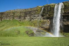 1 - Cascate di Seljalandsfoss (118) (Yksel85) Tags: streetart reykjavic islanda iceland horse iceberg geyser nikon rome church art cavallo vulcano murales viaggi travel turista fiordo fiordi ghiacciaio blonduoss cascate waterfall