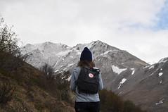 DSC_0759 (David.Sankey) Tags: alaska alaskarange mountains mountainrange denali denalinationalpark hiking nature park nationalparkdenalinationalparkandpreserve mckinley travel fog rivers savageriver savagealpinetrail trial savagealpine