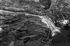Hisehope Burn (ca2cal) Tags: longexposure england blackandwhite bw white black blur water rock landscape mono waterfall stream durham tripod monotone burn website waterblur moor countydurham weardale project366 hisehope mugggleswick