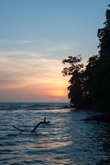 Atardecer Ro Cedro (Mara Paola Aguilar) Tags: ro cedro rio crdoba cordoba colombia beach playa photography fotos mariapaolaaguilarrojas paraso natural caribe mar sea