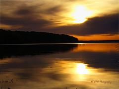 Fowl-set... (VFR Photography) Tags: blue sunset sky cloud lake reflection bird water birds silhouette clouds swimming swim reflections river gold golden geese spring tn tennessee ripple shoreline lakes paddle silhouettes blues sunsets peaceful calm goose shore rivers april reflective waters ripples recreation fowl canadiangoose canadiangeese waterfowl shores paddling waterway shimmering shimmer tennesseeriver honkers settingsun earlyevening recreational honker usfs kentuckylake cloudbank waterbugs stewartcounty unitedstatesforestservice pantherbay landbetweenthelakesnationalrecreationarea boswelllanding tennesseerivermile60