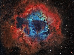 A Red and Blue Rose (The Rosette Nebula False Color Hybrid) (Terry Hancock www.downunderobservatory.com) Tags: camera sky monochrome night stars photography mono pier back backyard fotografie photos thomas space shed band science images astro apo m observatory telescope nebula astrophotography astronomy imaging ccd universe rosette narrow cosmos paramount luminance the lodestar sii teleskop astronomie byo oiii refractor deepsky f55 monoceros halpha ngc2237 ngc2244 astrograph lrgb autoguider starlightxpress ngc2238 ngc2239 ngc2246 tmb92ss caldwell49 mks4000 gt1100s qhy9m