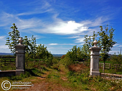 When dreams go wrong . (johndugganfoto) Tags: kilkenny ireland entrances johndugganfoto ei8frb