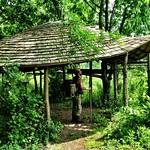 Leaf house, Paddington Farm thumbnail