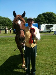 Number 1 (chezabela) Tags: red horse chestnut rossett horseshow tetley welshcob sectiond