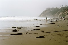 june gloom (oceanerin) Tags: leica summer beach santabarbara kodak portra m6 hendrys 75mm summarit junegloom roll111