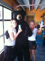 Labatt bear