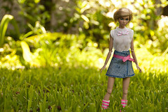 She's Not There bug watching (PoetC7) Tags: fashion dolls poppy fashiondoll royalty parker