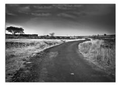 Beginning and end (pradeep javedar) Tags: road bw monochrome landscape roadtrip beginning end mundane gulbarga meandering canon600d