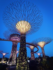 Supertree (-Edmund-) Tags: city longexposure urban tree architecture modern night canon landscape eos twilight singapore cityscape wide bluehour 1740 magichour 6d gardensbythebay