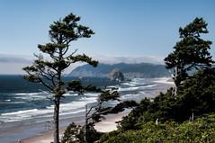Haystack Rock Cannon Beach Oregon (ams photos) Tags: ocean trees sky water oregon waves pentax pacificocean cannonbeach haystackrock