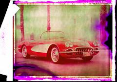 Untitled_Panorama1 (emulsionRocks) Tags: fuji large negative scanned 4x5 format 100 filmpolaroid