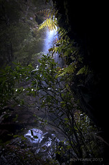 Behind the ferns (benpearse) Tags: world blue mountains heritage photography foot waterfall track ben australia august nsw six katoomba pearse 2013