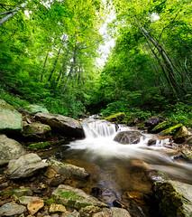 Sudden Throw (JourdanLaik) Tags: statepark longexposure nature water creek forest river landscape flow landscapes waterfall moss alabama amicalola