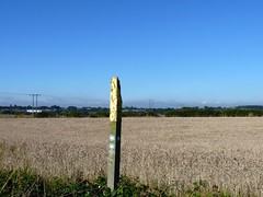 Lonely marker post (Northern Dave) Tags: leica blue our sky west sunshine lens outdoors lumix countryside open walk space yorkshire sunday leeds save hills panasonic views fields crops distance cereals rolling scholes semirural fz38 dmcfz38