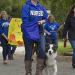 """<b>Homecoming Parade</b><br/> Luther Homecoming parade on Saturday, October 5, 2013. Photo by Breanne Pierce<a href=""""http://farm8.static.flickr.com/7426/10122047166_a2bddc9732_o.jpg"""" title=""""High res"""">∝</a>"""